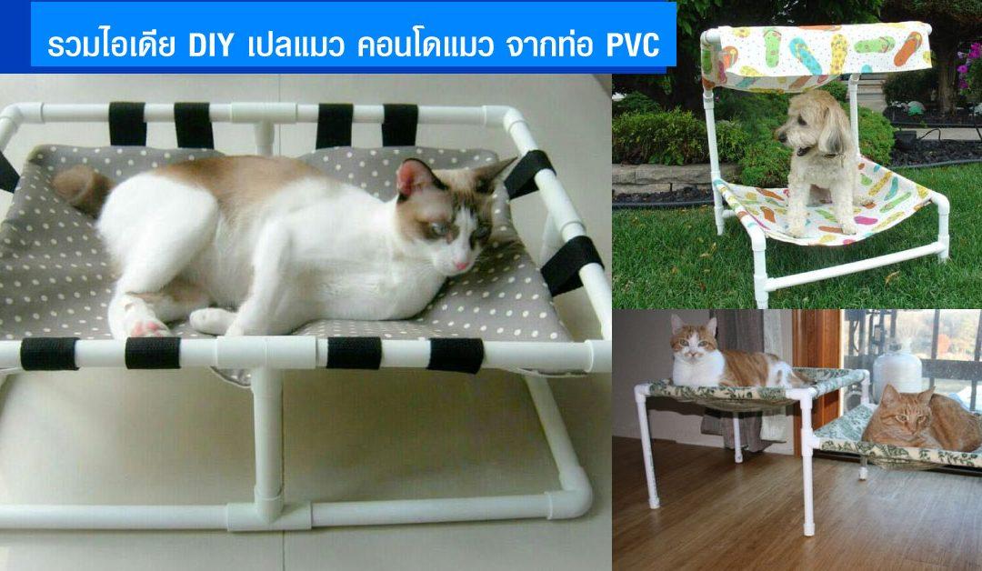 คอนโดแมว diy จากท่อ PVC เปลแมวทําเอง ทำใช้ หรือทำเป็นอาชีพเสริมได้