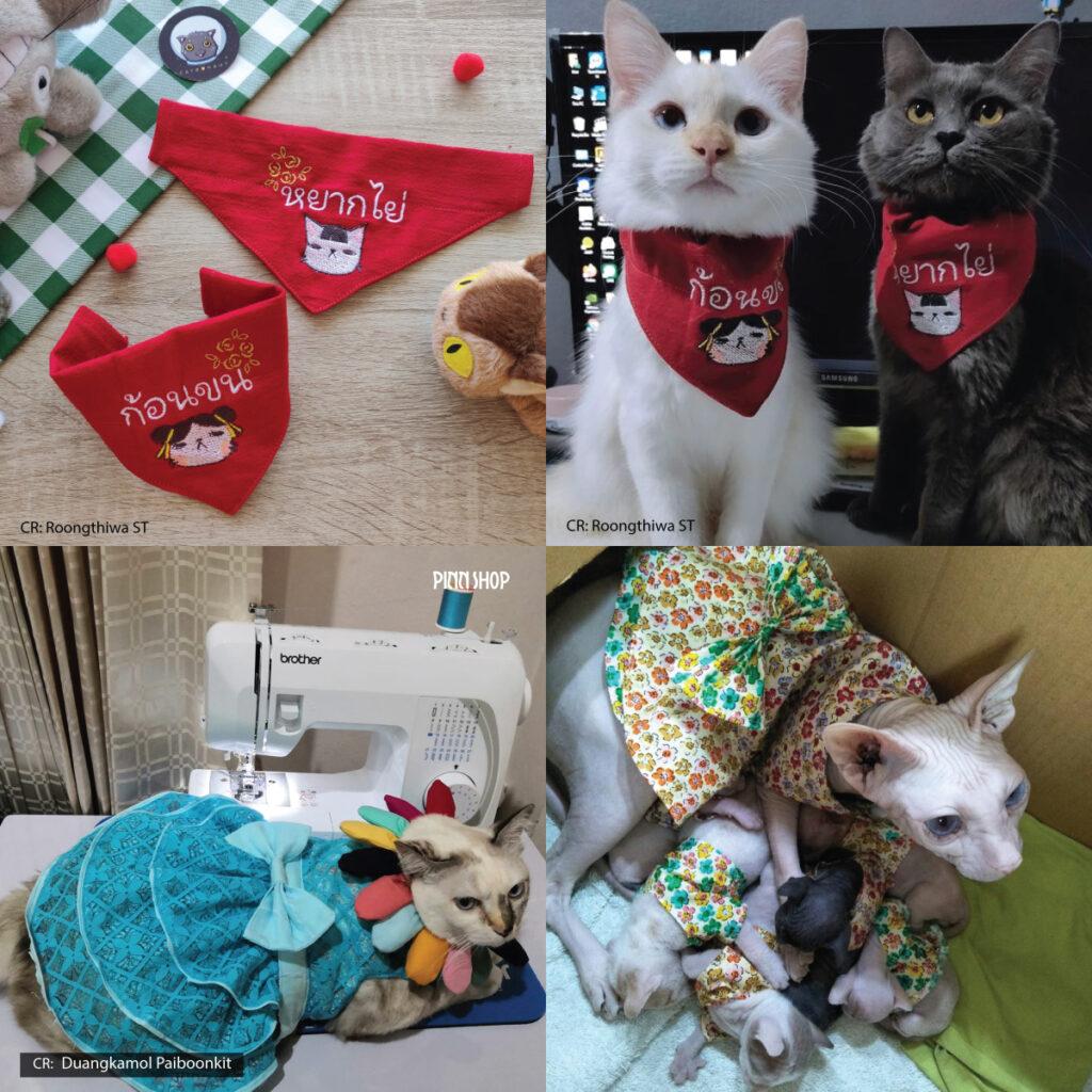 เสื้อแมว